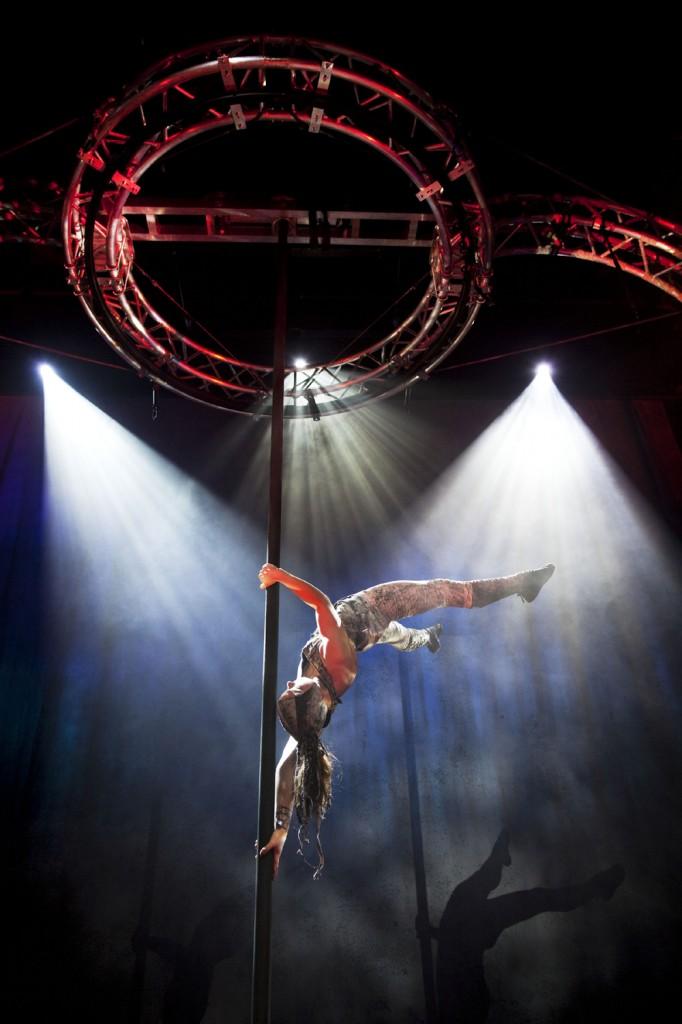 sirkuscirkor