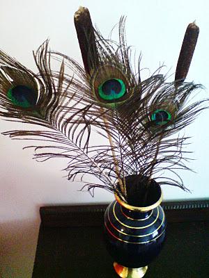 Påfuglfjær i vase